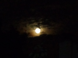 I marveled at the brilliant orb, a Supermoon, filling the sky with light