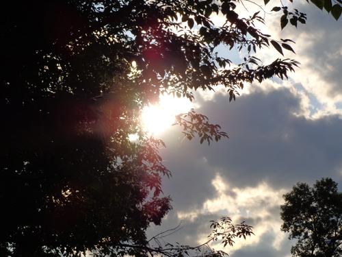 sunset8714