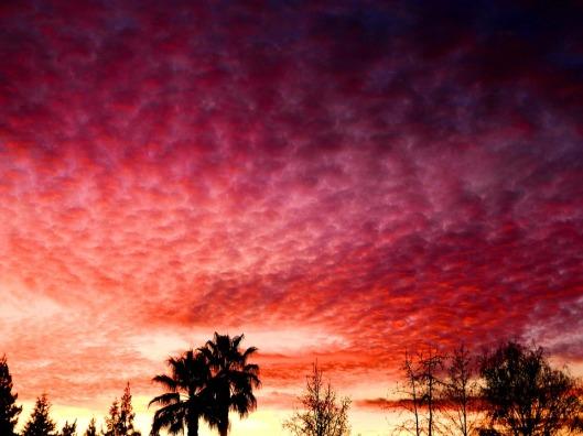 sunset-284237_960_720