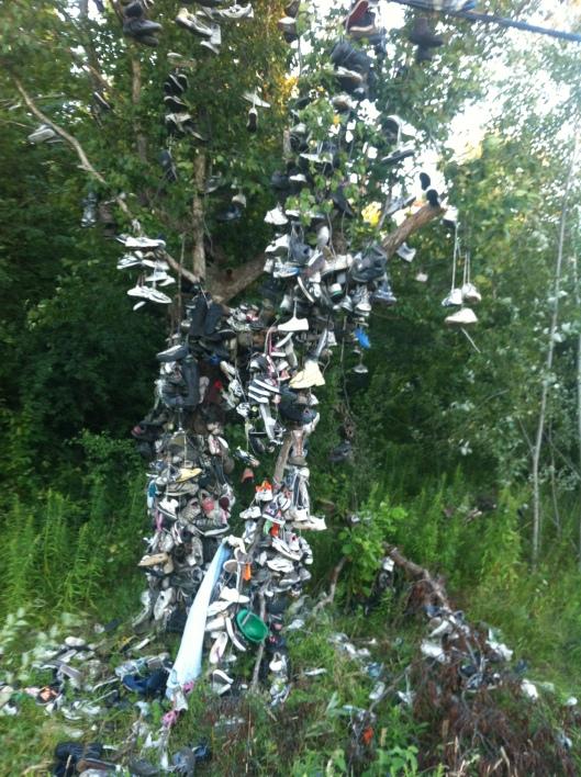 shoe-tree-002