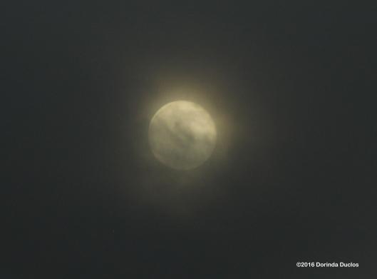 moon52216HH