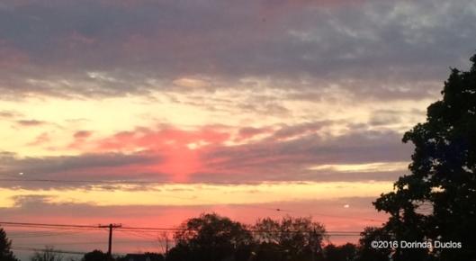 sunset51716b