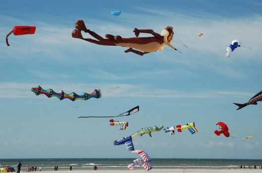 kite-681057_960_720