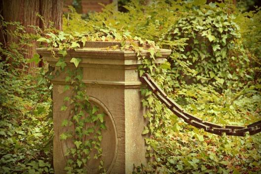 cemetery-1547686_960_720