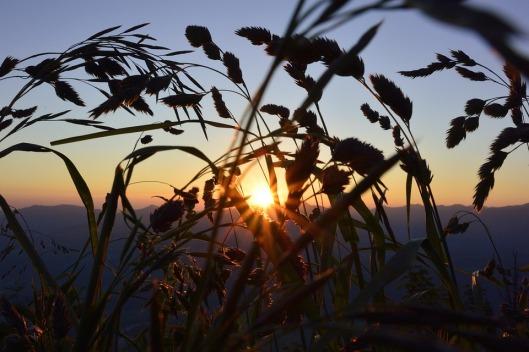 sunrise-836927_960_720