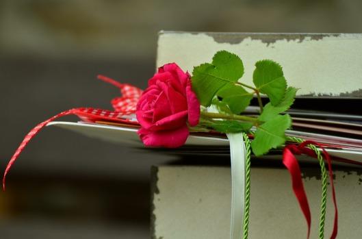 rose-889564_960_720