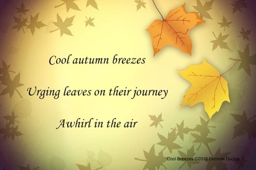 autumn-1634102_960_720