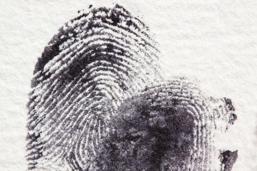 fingerprint-255904_960_720
