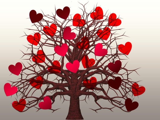 heart-1577791_960_720