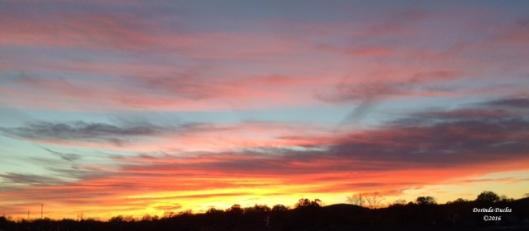 sunset1110c