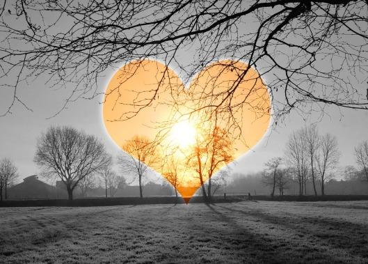 heart-590222_960_720