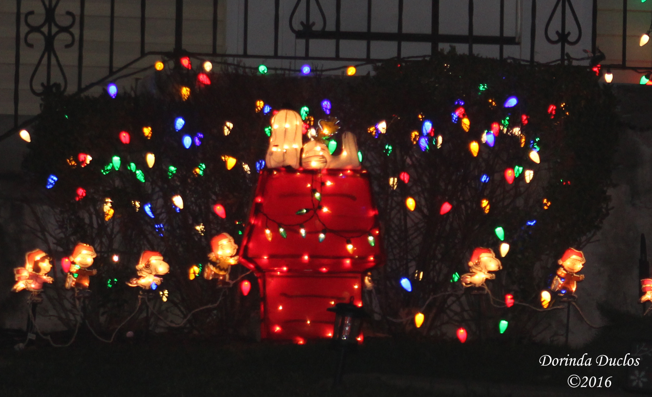 the snoopy gang is out in full force this year the last photo is our beloved snoopy as the red baron atop his sopwith camel - Snoopy Christmas Lights