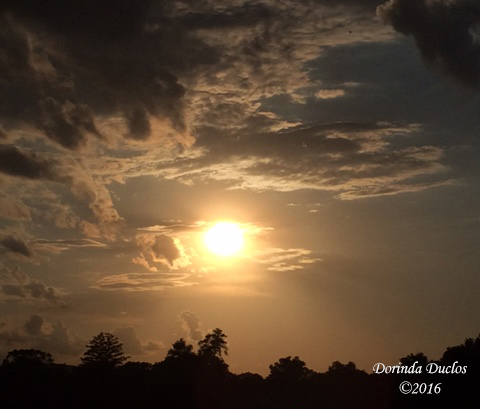 sunset6716