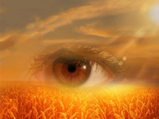eye-718523_960_720